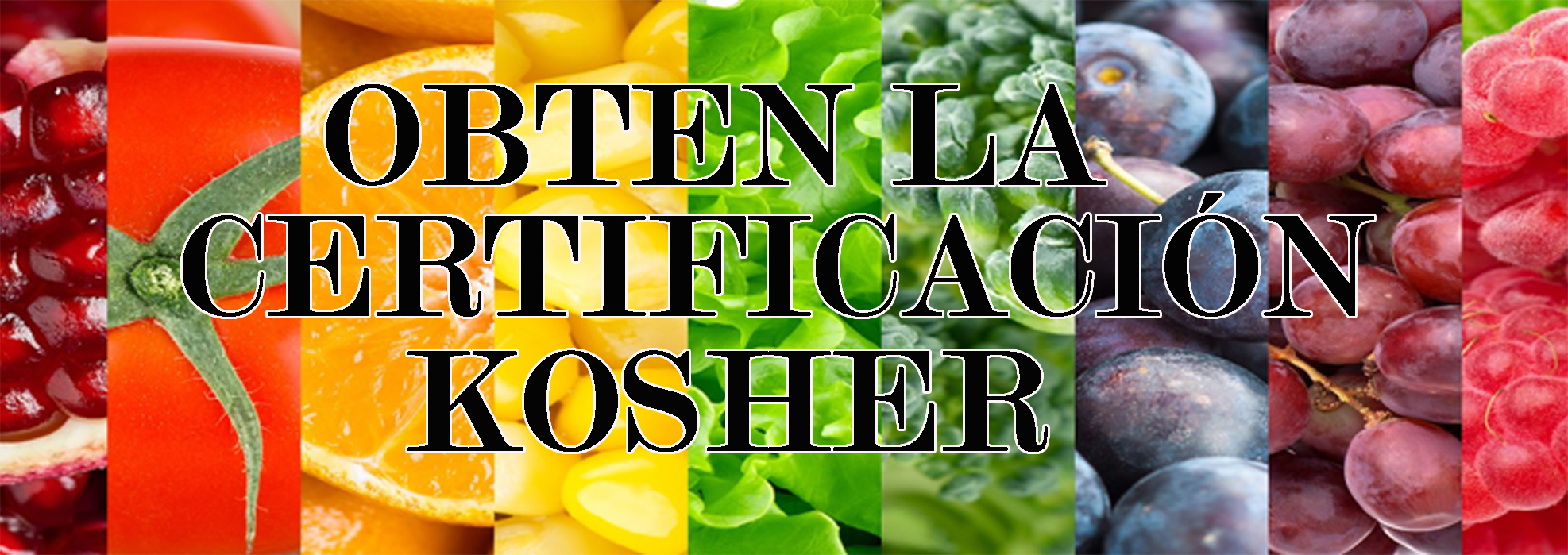 obten-la-ceretificacion-kosher-2-copy